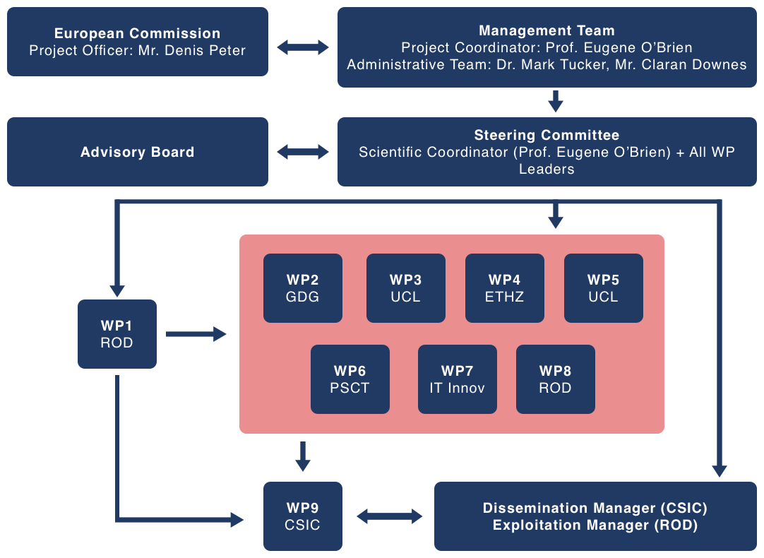 Management Structure and Procedures